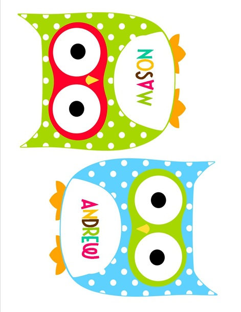 Cute Owl Classroom Decorations ~ No dr seuss and owl theme sneak peek schoolgirlstyle
