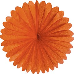 D19MA-orange-paper-daisy