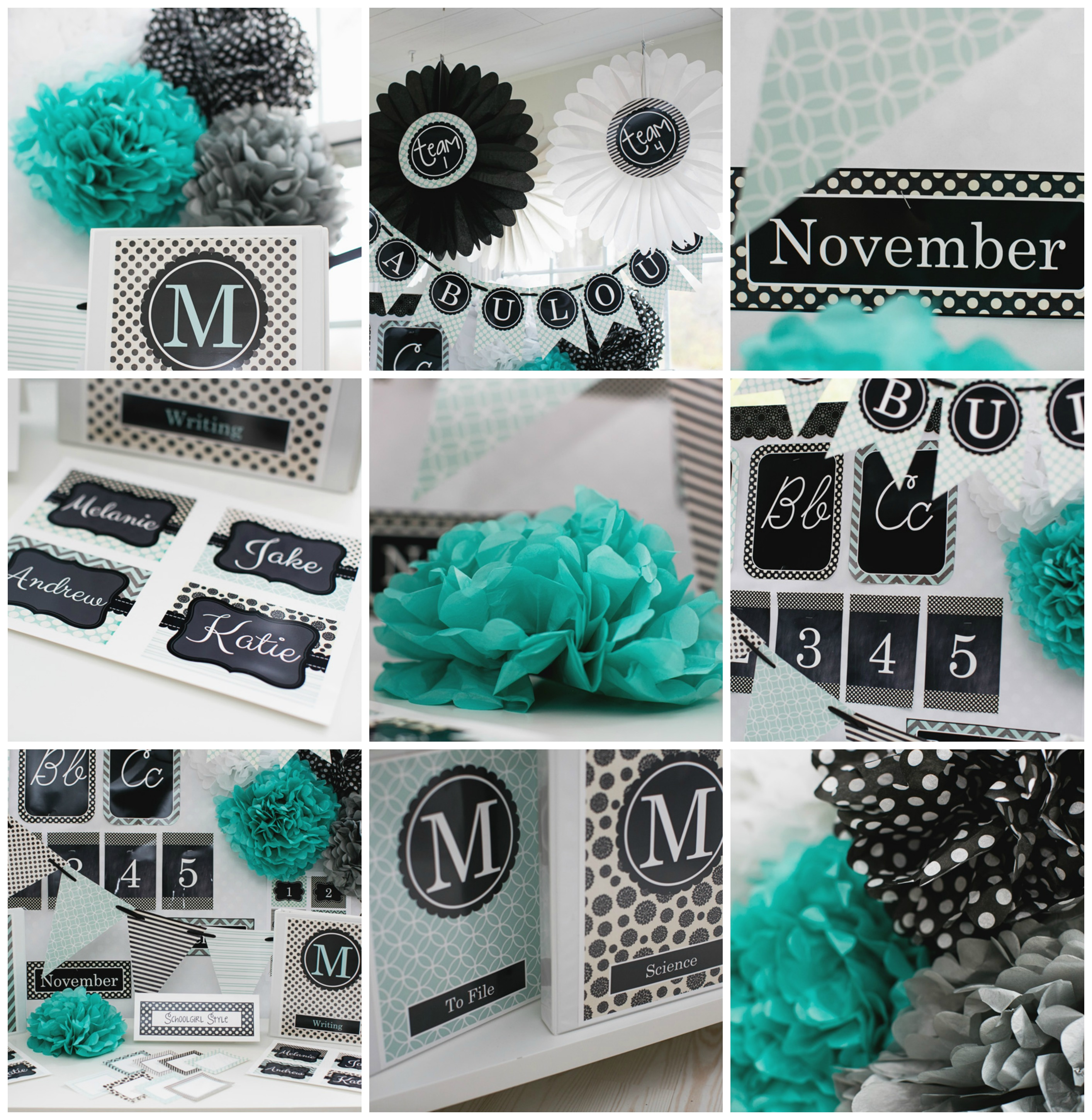 Classroom Decor Black ~ Black and teal themed classroom ideas home furniture